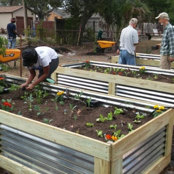 Volunteers working together to build a food forest to train veteran farmers