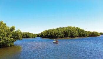 Weedon Island