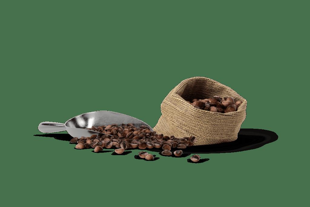 Coffee St Pete - Black Crow Coffee Company